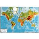 Carte Planisphère 124x80 cm